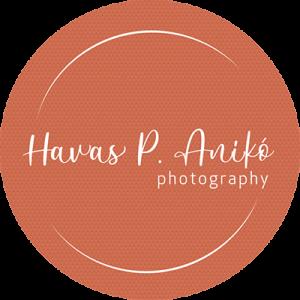 havasp-logo-small